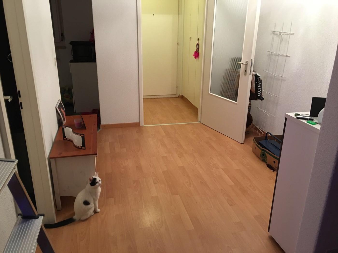 2 zimmer wohnung in lengnau mieten flatfox for Wohnung in mieten